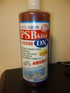 PSBキングDX