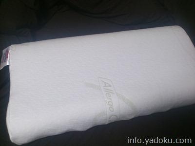 sembella-whip1(センベラ(SEMBELLA)のホイップ2という高級ラテックス枕)